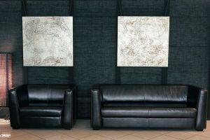 Кожаная мебель для зала